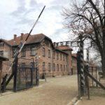 Преступления в концлагерях планировались еще до начала войны