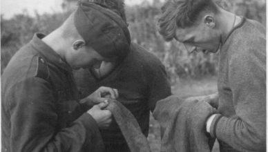 К весне 1942 года тифозная вошь