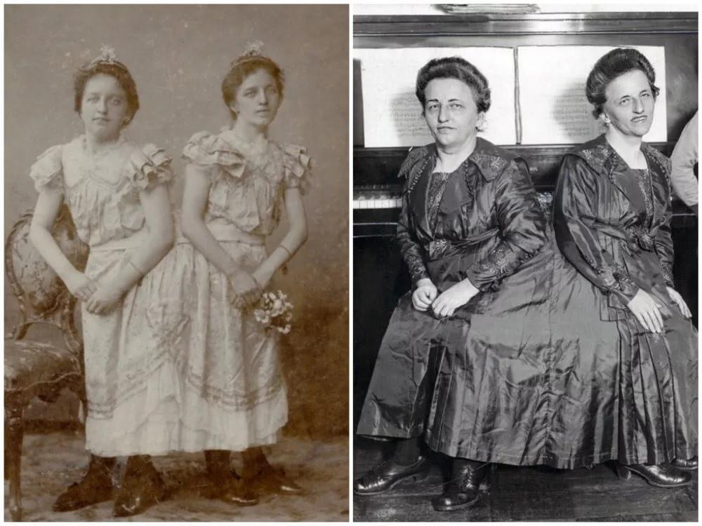 «Венгерские сёстры» родились в 1701 году