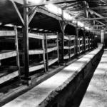 «Добродушный» баварец Освенцима
