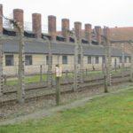 Движение сопротивления в Освенциме