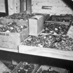 Как кладоискатели ищут поезд с сокровищами, которые награбили нацисты