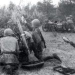 Итоги разгрома немецкой артиллерии под Ленинградом