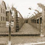 Акция против голландских евреев в Бухенвальде