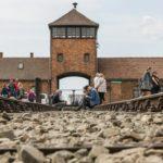 Поляки в особом лагере Бухенвальда - рассказ очевидца