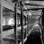 Состояние здоровья заключенных в лагере Бухенвальд