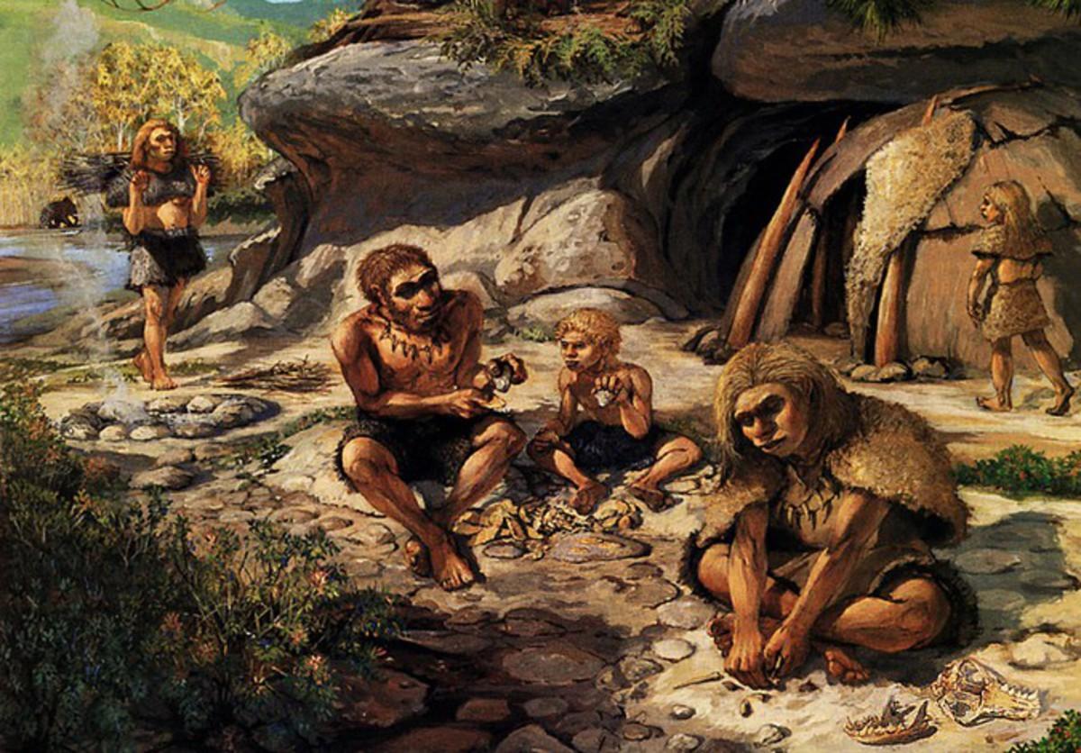 Сколько видов людей было в каменном веке
