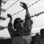 231 человек погибли при побеге из концлагеря