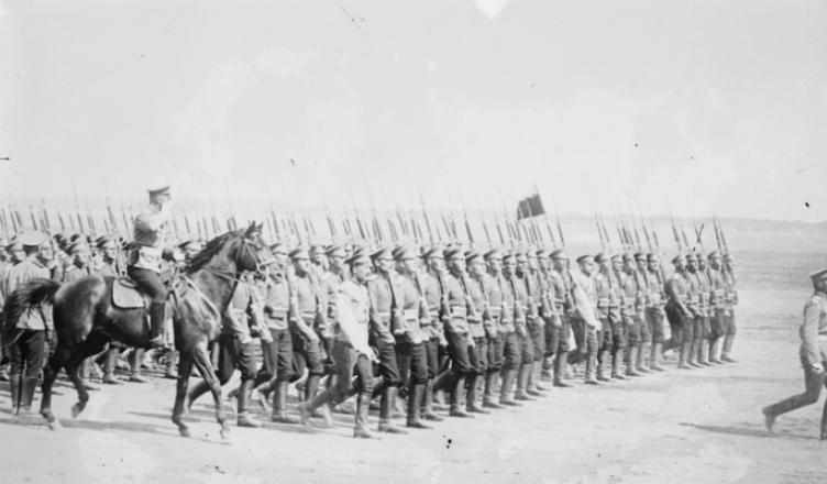 Итого 29 батальонов