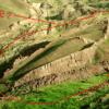 Ноев Ковчег нашел пристанище на горе Арарат